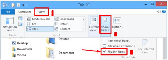 showing hidden files in windows 10