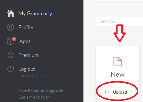 how to use Grammarly editor