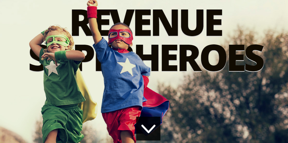 RevenueHits Review 2016