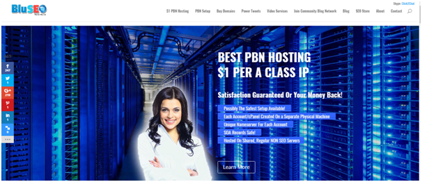 bluseo pbn hosting