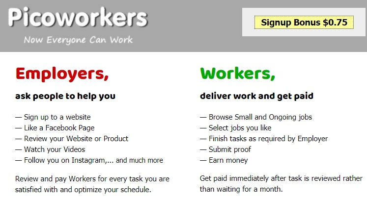 Picoworkers Review