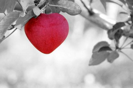 Heart DP for friends