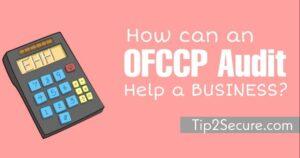 ofccp audit business